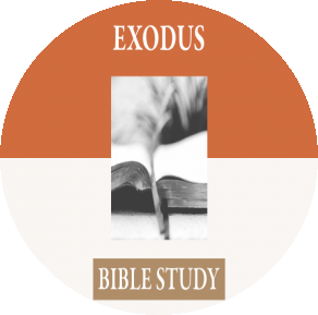 The Book Of Exodus Chapter 1-4