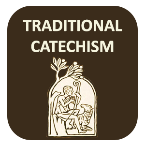 Traditional Catholic Catechism Lessons Online